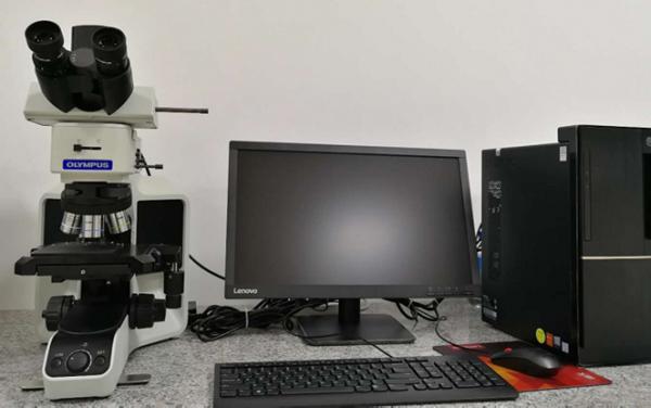 Olympus顯微鏡
